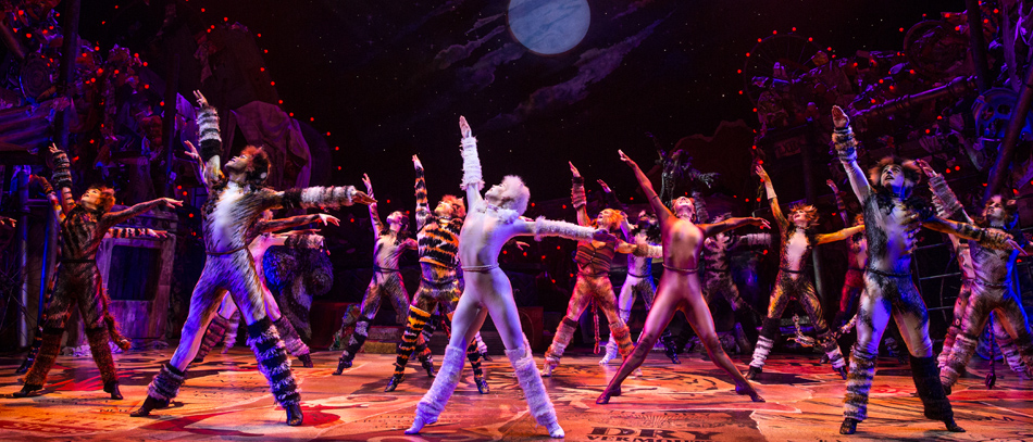 Cats to Live-On in National Tour